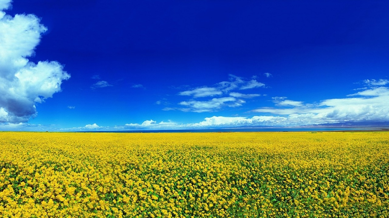 landscape-1259737_1280